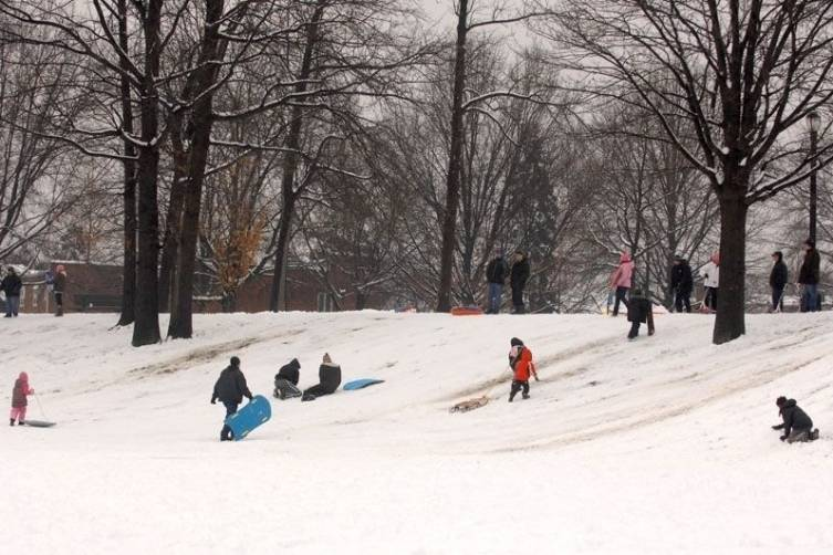 Places To Go Sledding In Staten Island