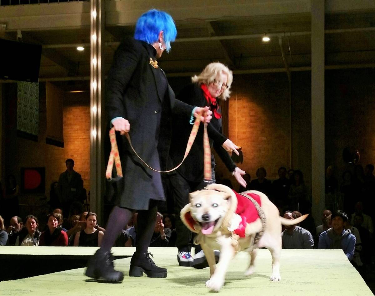 b7805a02c Haute Dog! A Doggie Runway Fashion Show for a Good Cause