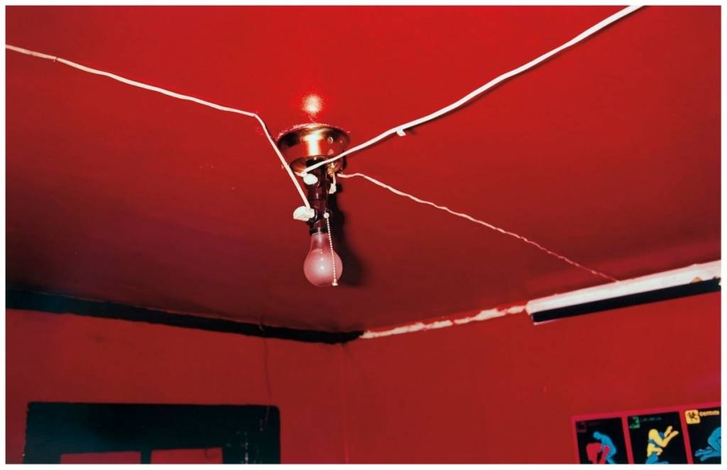 trevor traina william eggleston