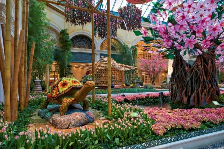 Bellagio Conservatory - Turtle and Cherry Blossom Tree