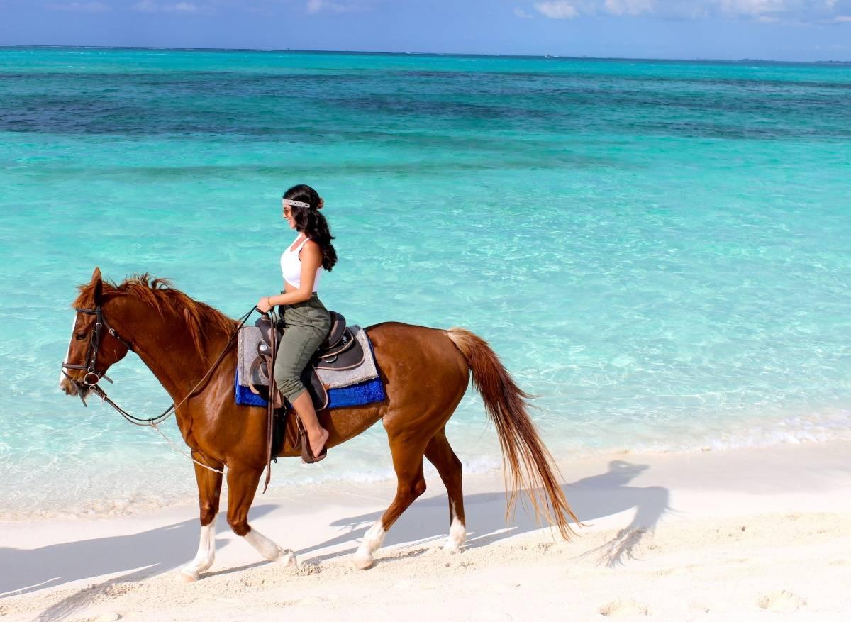 Beach Horseback Riding