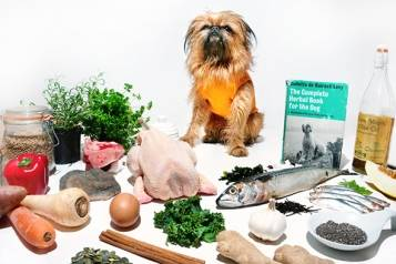 LOW RES Holistic Foodie Dog