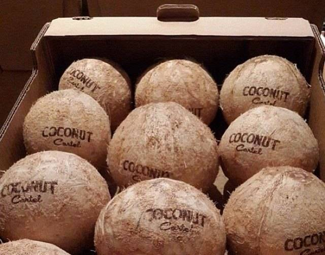 Branded Coconuts