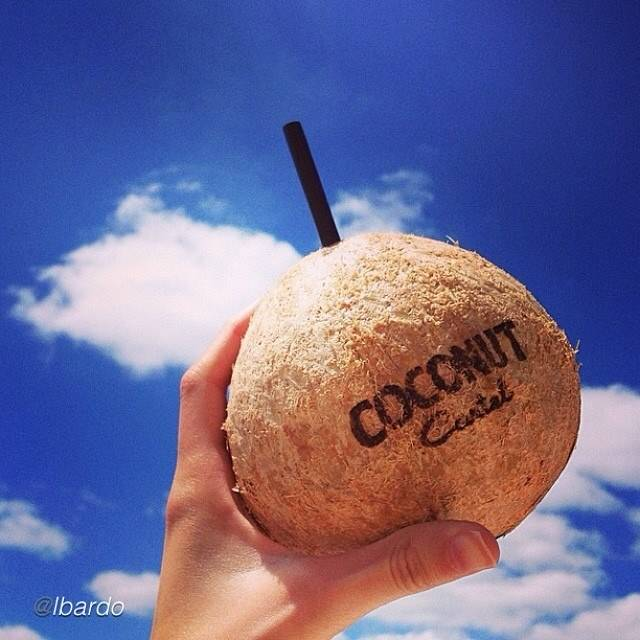 Coconut Cartel