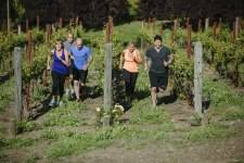 Domaine Carneros Workout_001