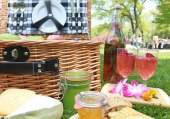 new-picnics-parks-takes-new-york-ci