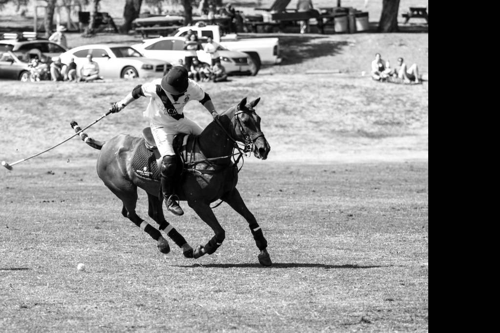 British Polo Day USA. Credit Keoma Zec (14)