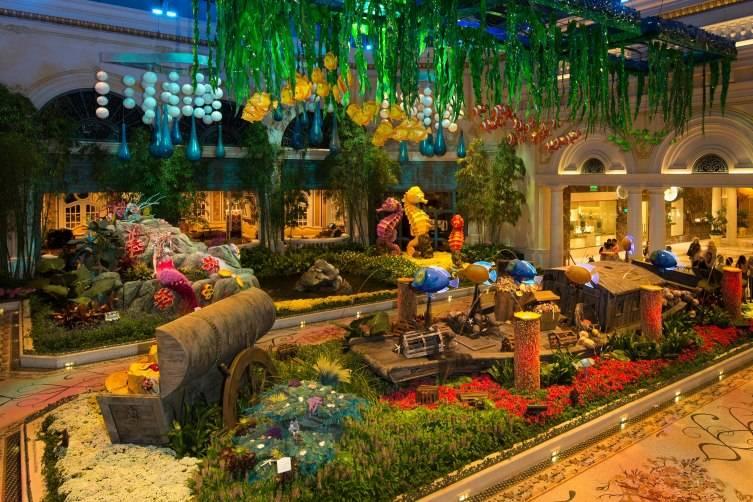 Summer_Display_East_Garden