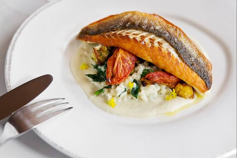 Branzino with fennel purée