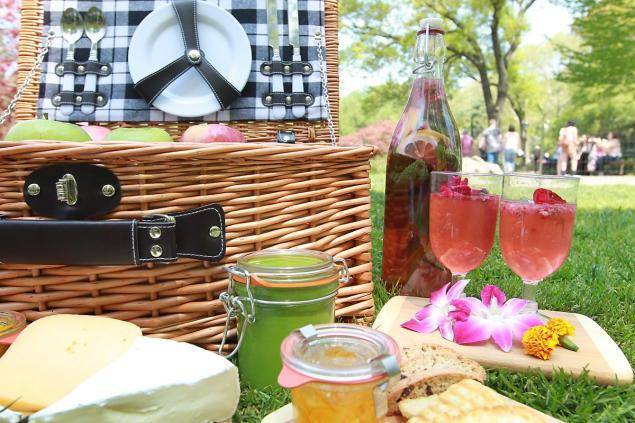 new-picnics-parks-takes-new-york-ci