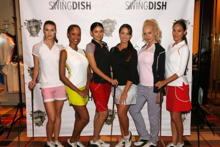 SwingDish 4