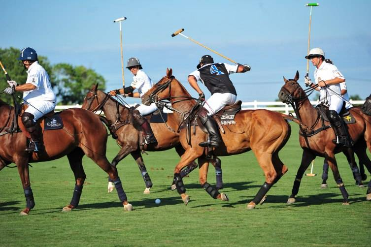 Piaget Hamptons Cup-mosphere, Polo-mosphere