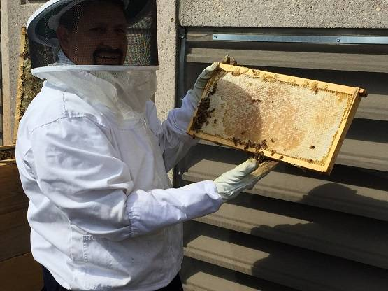 Bee Keeper Edwin Medrano on the Rooftop of the Seaport Boston Hotel