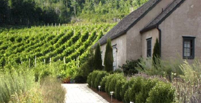 Petite Riviere Vineyards