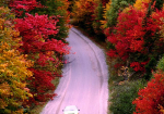 4 Fall Drives From NYC For Haute Leaf Peeping