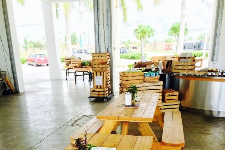 Verde Market interior