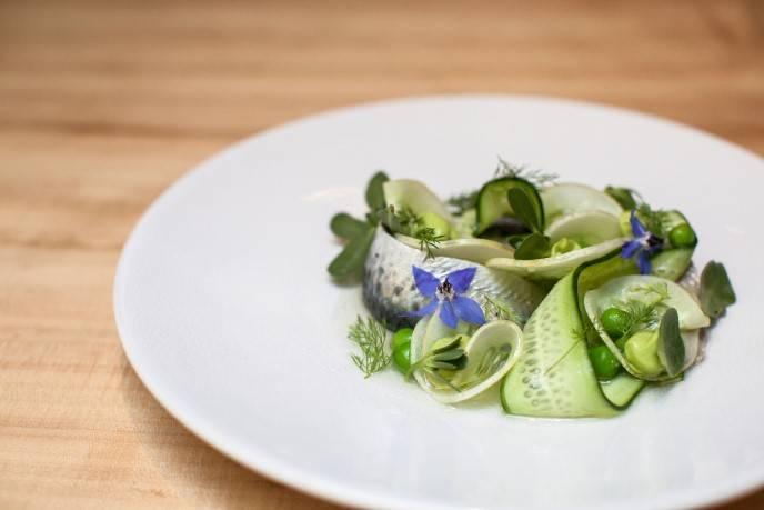 Sardine Cucumber