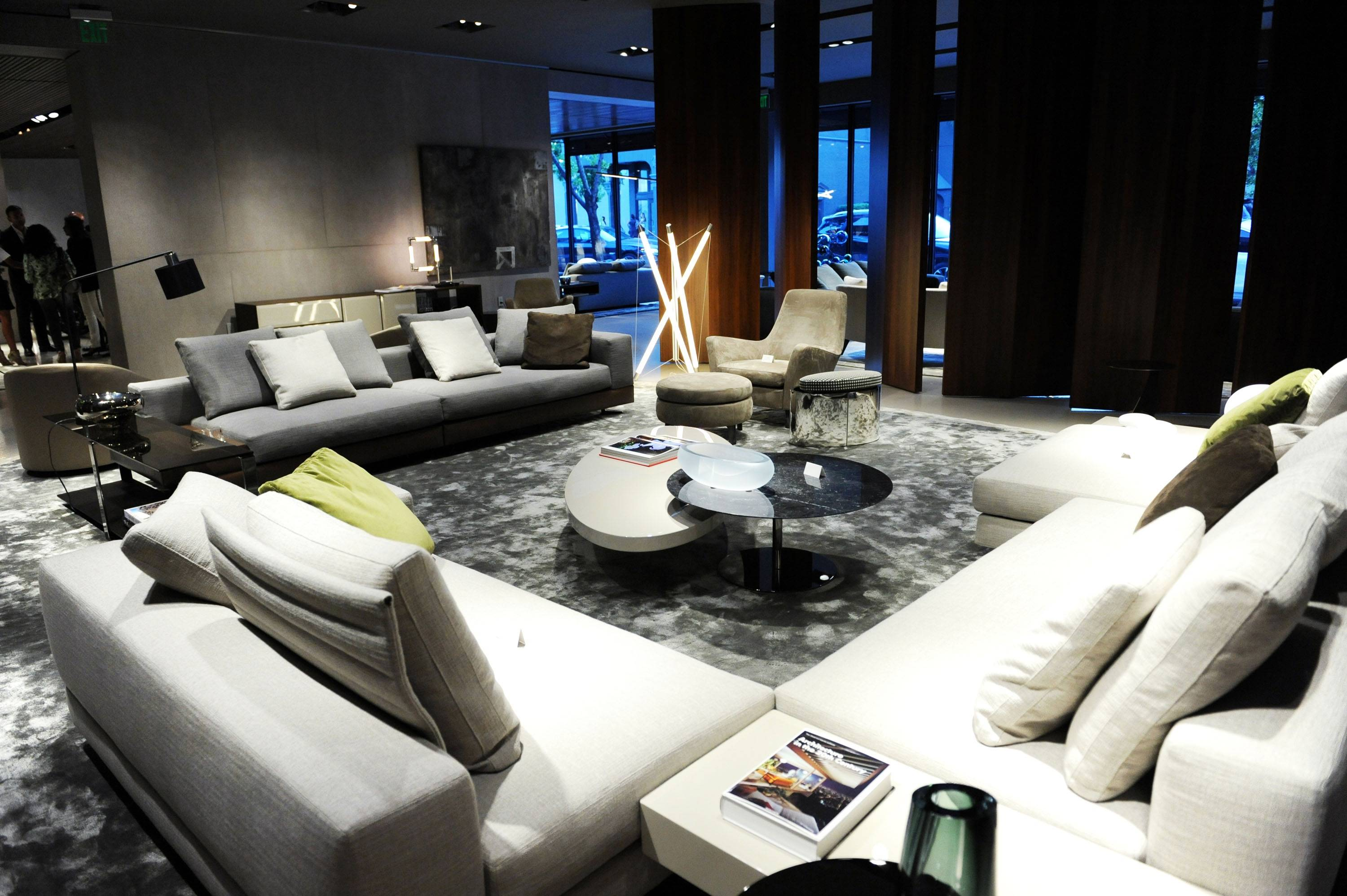 Minotti Furniture 2