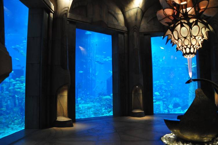 The Lost Chambers at the Atlantis Aquarium, Dubai