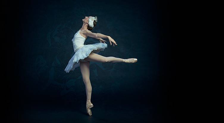 swan_story