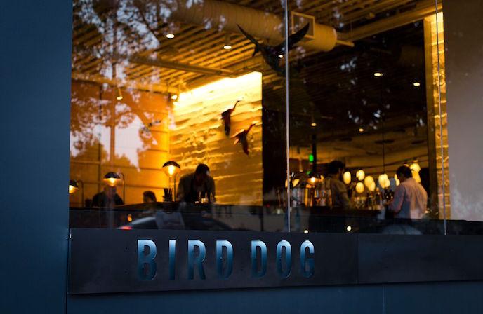 Bird Dog Exterior