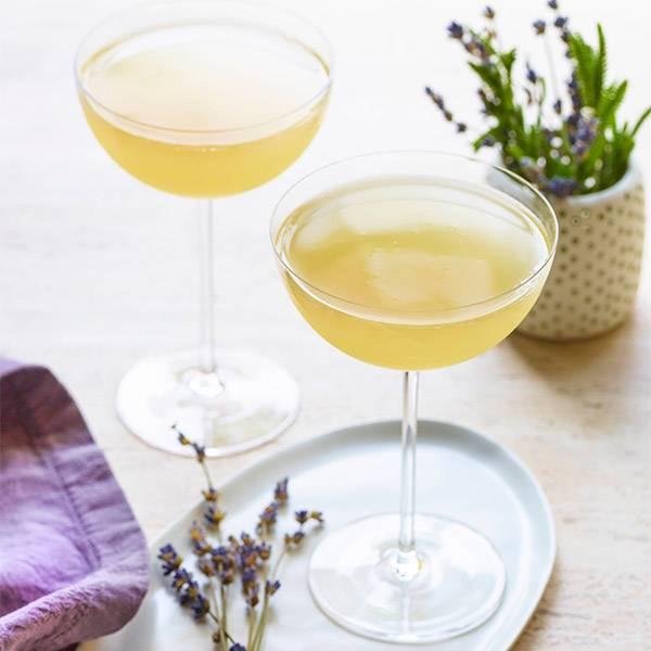 Lavender-Lime-Fizz
