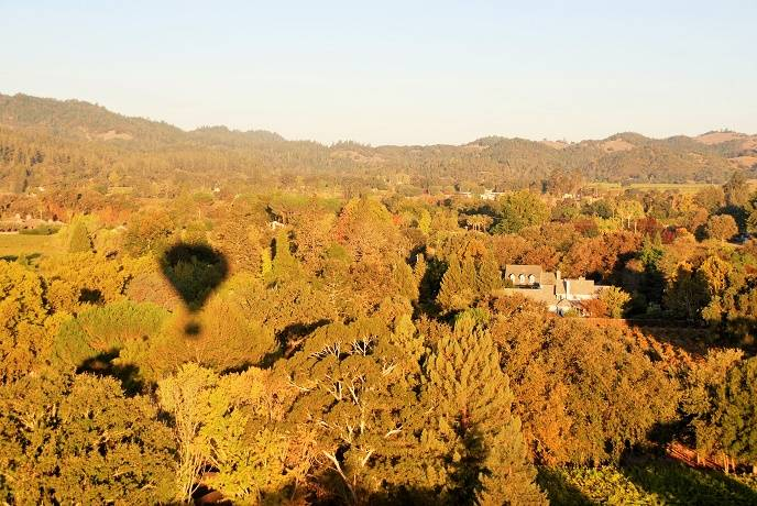 View from Bennett Lane Winery balloon