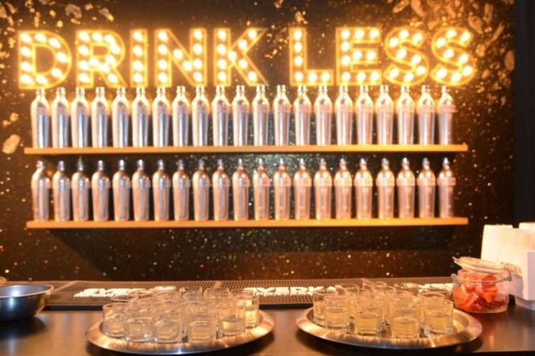 SVEDKA Vodka's Broken Resolutions Bash 2