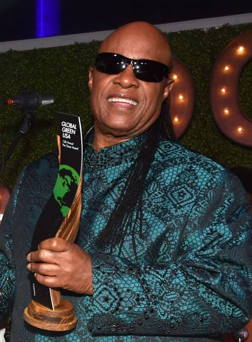 Honoree Stevie Wonder accepts the Global Green Hero Award onstage during Global Green USA's 13th annual pre-Oscar party