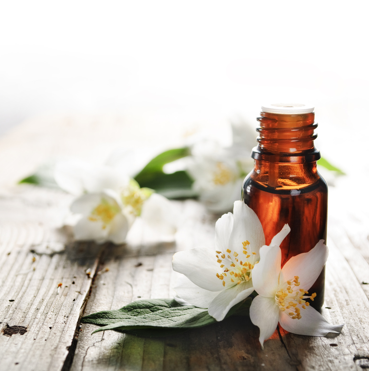 A Haute Essential Oil Guide For Everyday Use