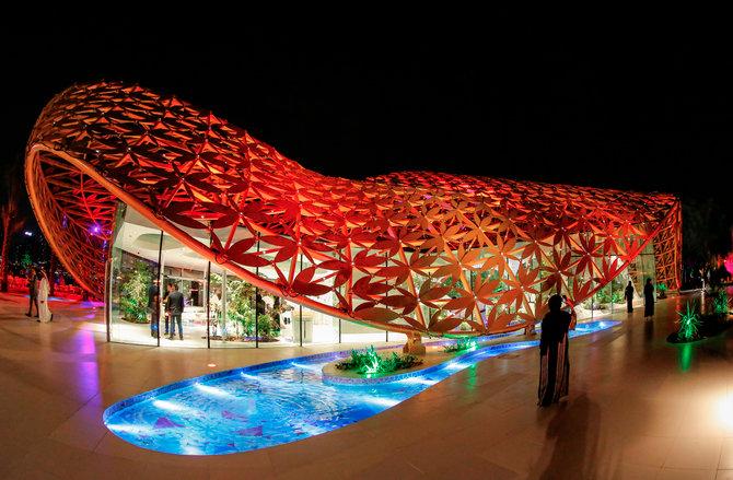 Al Noor Island TseTse Mayara Art Dr. Nasrine for HL
