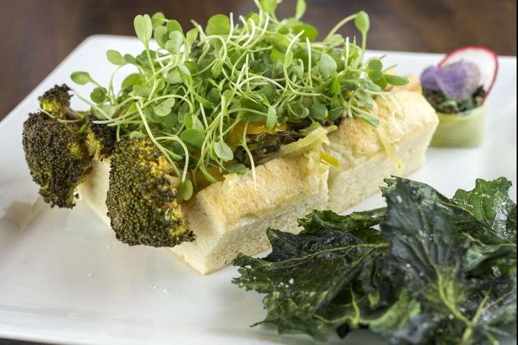 The Broccoli Dog