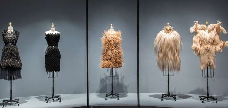 Featherwork Gallery