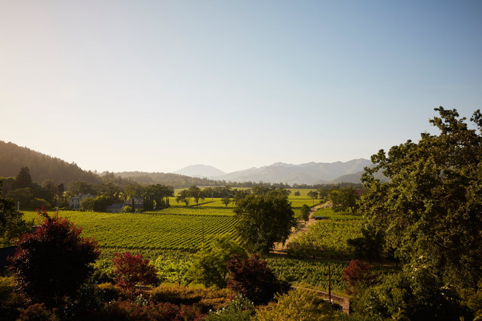View from the terrace at Trinchero Napa Valley