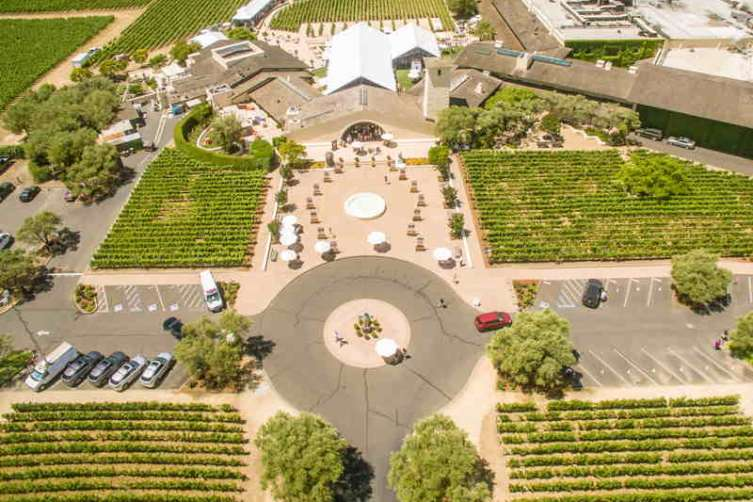 2016 Auction Napa Valley 4