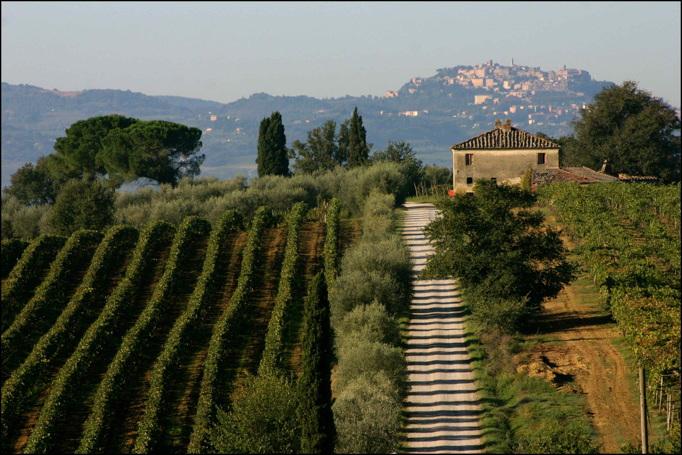 Cinema-perfect landscapes are plentiful in the Valdichiana, Tuscany