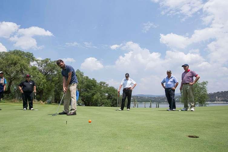 golf herman miller 5