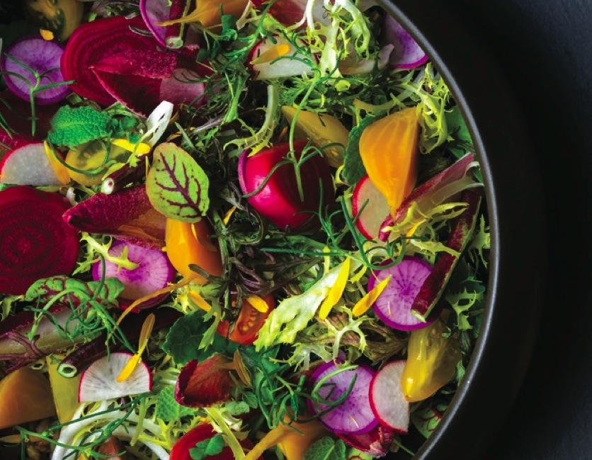 The Harvest Salad at Harvest by Roy Ellamar