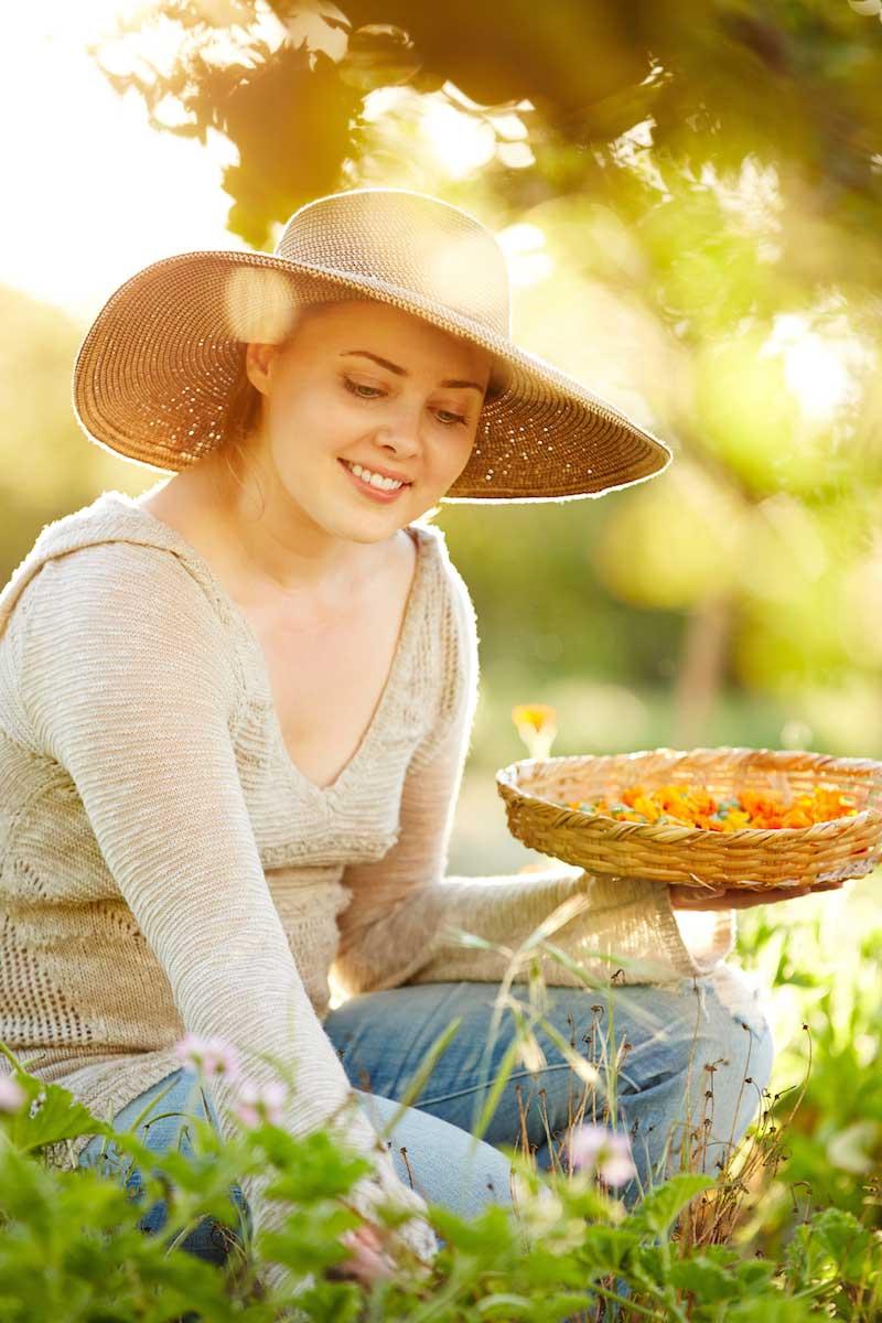 Laurel Shaffer harvests ingredients