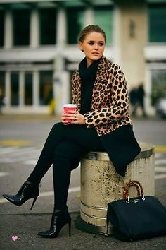 Bold Animal Prints