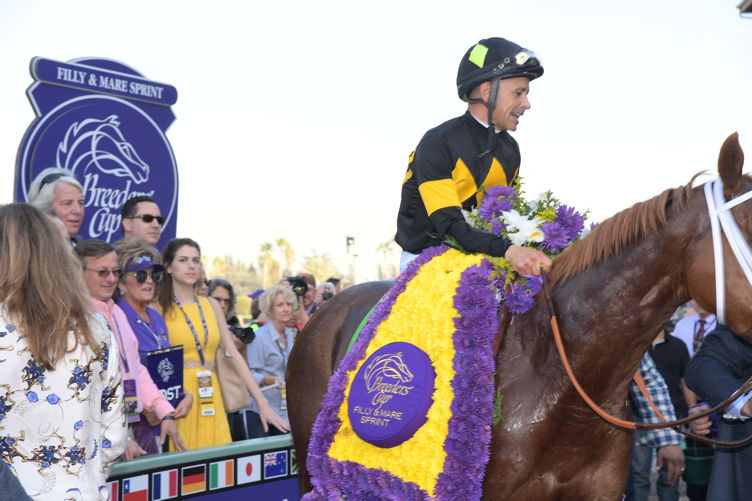 2016 Breeders' Cup World Championships 1