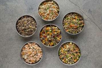 Dishes For Dogs (3)_photo credit Marietta Losada