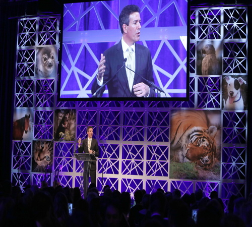 President and CEO of The Humane Society of the United States, Wayne Pacelle, speaks onstage at The Humane Society of the United States To the Rescue! New York Gala: Saving Animal Lives on Friday, Nov. 18, 2016 in New York City. To the Rescue! is a benefit in celebration of the life-saving work of its animal rescue efforts across the nation and around the world. In its seventh year, the event honored Georgina Bloomberg and HUGO BOSS, and featured a performance by Moby. (Amy Sussman/Invision for The Humane Society of The United States/AP Images)
