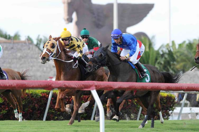 Pegasus World Cup Invitational - Image 2 - Photo Credit - Gulfstream Park