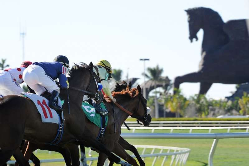 Pegasus World Cup Invitational - Image 3 - Photo Credit - Gulfstream Park