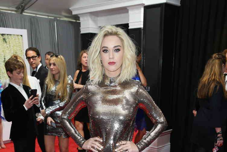 2017 Grammy Awards 5