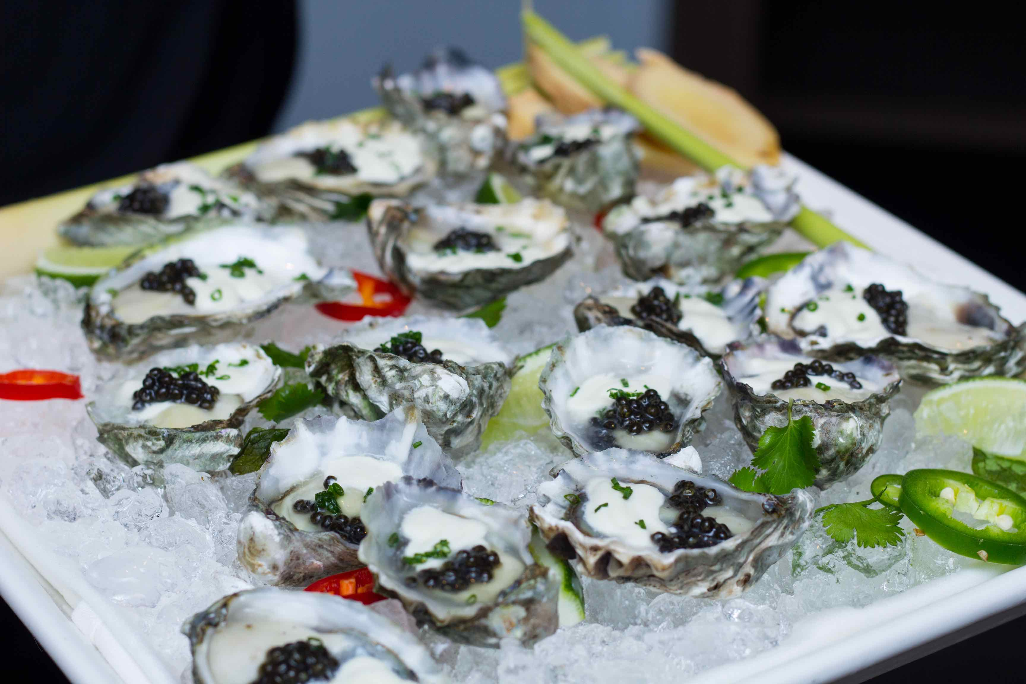 Kumamoto Oysters at db Bistro SOBEWFF Dinner