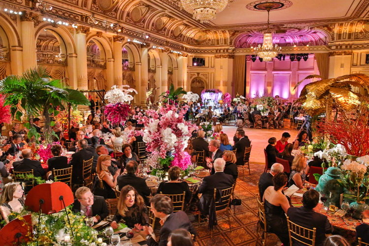 The Orchid Dinner: The New York York Botanical Garden