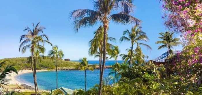 How to Have a Haute Hawaiian Vacation