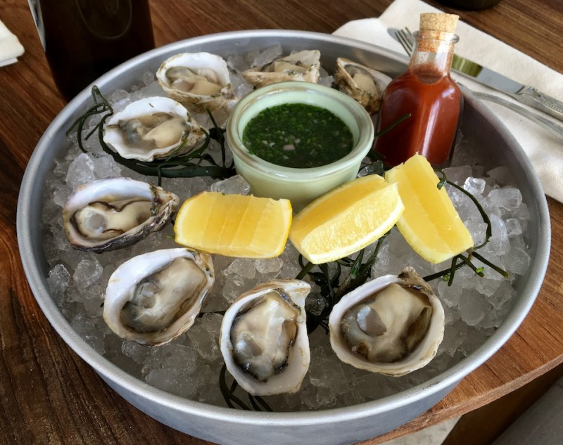 Burlock Coast Oysters